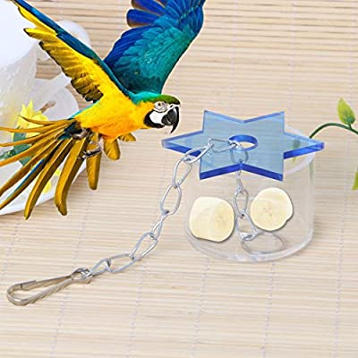 Itemap Bird Cage Star Feeder Hanging Foraging Chew Feeding Box Toys from Itemap