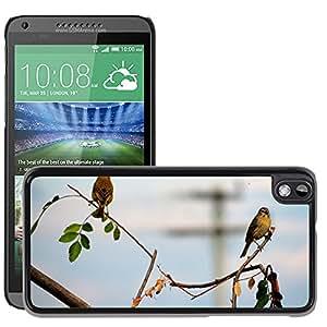 GoGoMobile Slim Protector Hard Shell Cover Case // M00119492 Birds Nature Animal World Life // HTC Desire 816
