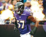 Autographed C.J. Mosley 8x10 Baltimore Ravens Photo