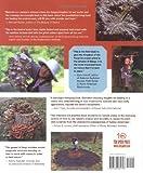 Mycelium Running: How Mushrooms Can Help Save the