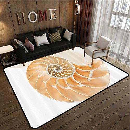 Nautilus Outdoor Shell - Indoor Outdoor Rugs,Sacred Geometrty Decor,Nautilus Shell Showing The Chambers in Distance Curves Helix Hidden Print,Cream 59
