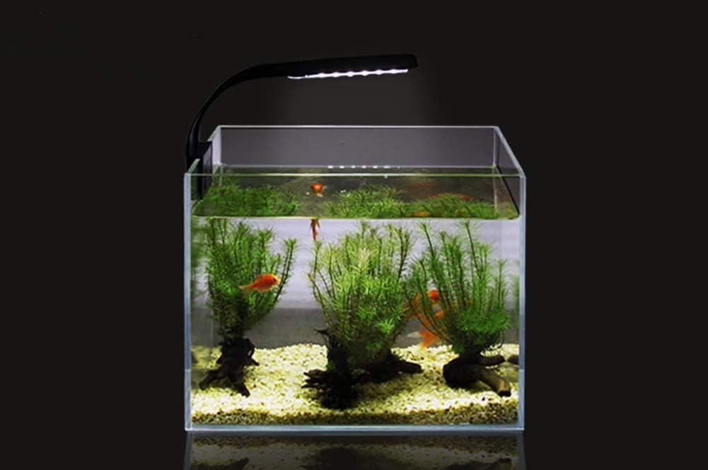NICREW Luce Acquario Ultrasottile Mini Lampada Acquario con 24 LEDs Luce Bianca e Blu per Acquario di 30-40 cm 10W Bianco