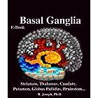 Basal Ganglia, Striatum, Thalamus: Caudate, Putamen, Globus Pallidus, Limbic Striatum, Brainstem, Parkinson's Disease, Alzhei