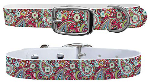 (C4 Fashion Dog Collar - Personalized Available - for Boy & Girl Dogs Sizes Small, Medium, Large, and X-Large - Metal Buckle (Medium - Fits Neck Size 14