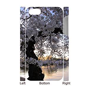 Custom Cover Case with Hard Shell Protection for Iphone 4,4S 3D case with Old trees lxa#485170 by icecream design