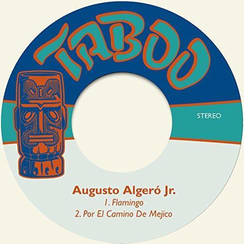 Amazon.com: Por el Camino de Mejico: Augusto Algeró Jr.: MP3