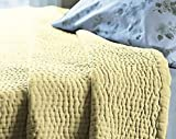 Be-you-tiful Home 3 Piece Quilt, King, Butter Cream Velvet