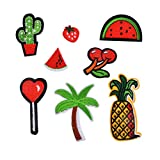 Souarts Solid Mixed Watermelon Cherry Pineapple Cactus Shaped Embroidered Sew Iron On Applique Patches Pack of 8pcs