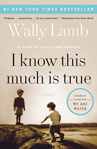 I Know This Much Is True: A Novel (P.S.) cover