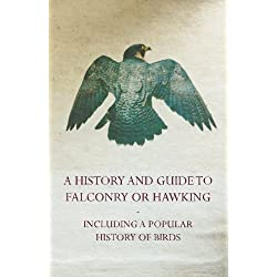 A History And Guide to Falconry or Hawking