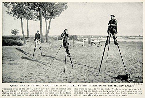[1938 Print Landes France Shepherds Stilts Dog Historical Image Costume XGGD4 - Original Halftone] (Costume Land)