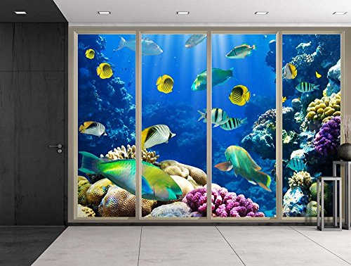 Colorful Striped Fish Swimming Over Colorful Coral Reefs Viewed From Sliding Door Creative Wall Mural Peel and Stick Wallpaper