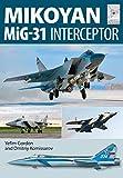 Mikoyan MiG-31: Defender of the Homeland (Flight Craft)