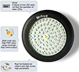 Mrhua 300W UFO LED Grow Light, LED Plant Grow