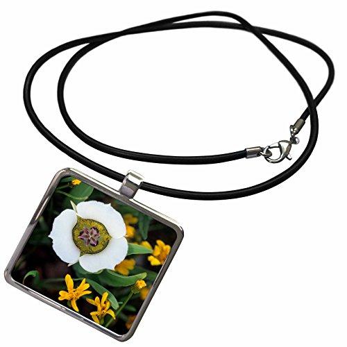 - 3dRose Danita Delimont - Colorado - USA, Colorado. Mariposa Tulip and Mountain Wildflowers - Necklace with Rectangle Pendant (ncl_230380_1)