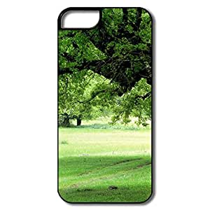 Unique Old Trees Spring IPhone 5/5s Case For Him