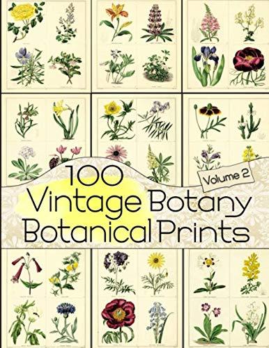 (100 Vintage Botany Botanical Prints Volume 2 (Floral Ephemera Series))