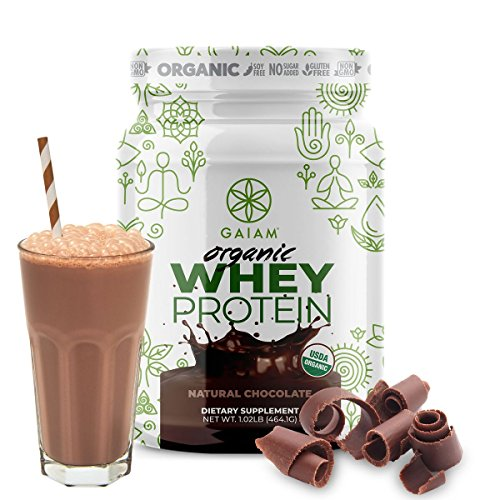 GAIAM Organic Whey Protein (Made in USA, USDA Organic Certified, 0g Sugar, 19g-20g Protein Per Serving) – 1lb Jar (Natural Chocolate) For Sale
