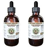 Wild Lettuce Alcohol-FREE Liquid Extract, Organic Wild Lettuce (Lactuca Virosa) Dried Herb Glycerite Natural Herbal Supplement, Hawaii Pharm, USA 2x4 fl.oz