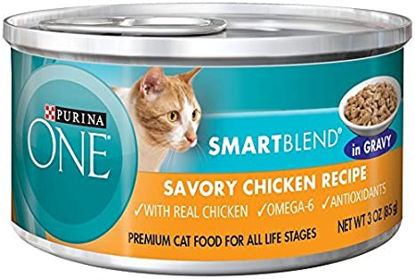 Amazon.com: Purina ONE SmartBlend Wet Cat Food, Braised in Gravy, Savory Chicken Recipe, 3-Ounce Can by Purina ONE: Automotive