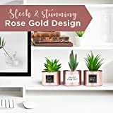 Office Decor for Women Desk- Rose Gold Decor Desk