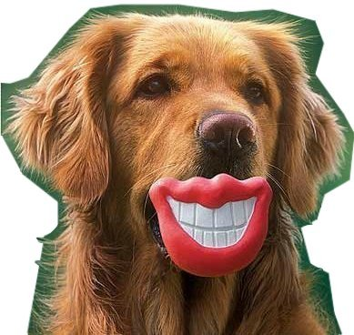 Big Red Lips (Lillypet TM Puppy Dog Toys Big Red Lip Rubber Toy Dog Toy Lips for Pet Dog with Sound Squeaker Squeaky)