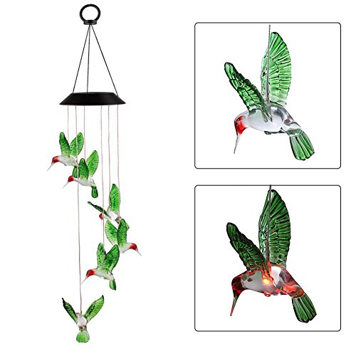 Hummingbird Outdoor Lights