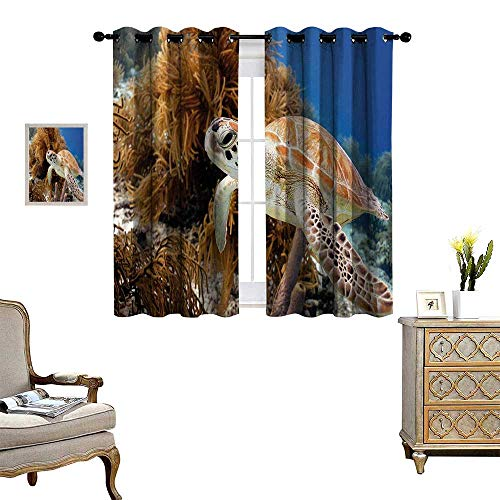 Anyangeight Turtle Blackout Window Curtain Coral Reef and Sea Turtle Close Up Photo Bonaire Island Waters Maritime Customized Curtains W72 x L72 Pale Coffee Brown Blue