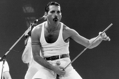 Queen Freddie Mercury iconic pose holding microphone stand Wembley Live Aid 24X36 Poster