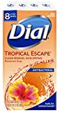 Dial Antibacterial Deodorant Bar Soap, Tropical Escape, 4 Ounce, 8...