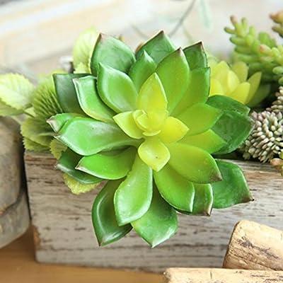 Lclrute Fleurs Artificielles Usine De Plantes Succulentes