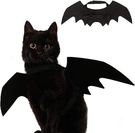 Ehdching Disfraz de Gato para Halloween con alas de murciélago ...