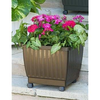 Amazon Com 15 Quot Self Watering Rolling Planter For Indoor