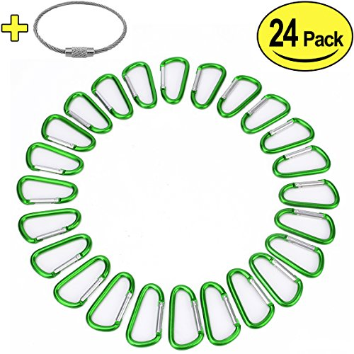 "2"" Aluminum D Ring Carabiners Clip D Shape Spring Loaded Gate Small Keychain Carabiner Clip Set for Outdoor Camping Mini Lock Snap Hooks Spring Link Key Chain Durable Improved 24 PCS (Green)"