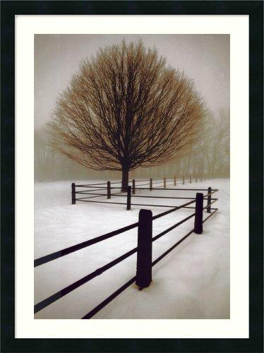 "Framed Art Print, 'Solitude' by David Lorenz Winston: Outer Size 24 x 33"""