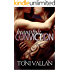 Beautiful Conviction (Desperation #2)