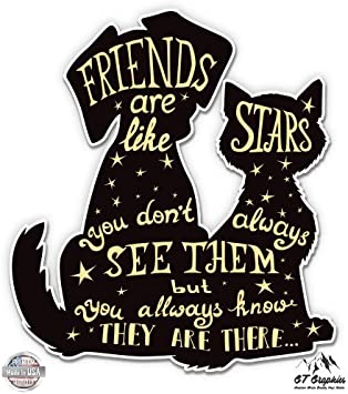 Vinyl Sticker Waterproof Decal GT Graphics Friends are Like Stars Cat Dog Cute