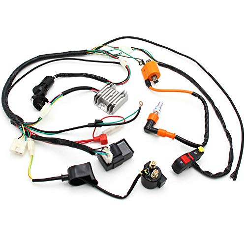 znwiem Complete Electric Stator Wiring Harness Wire Loom for Pit Bike Scooter ATV Quad 150 200 250 300cc Stator CDI Coil: Amazon.co.uk: Sports & Outdoors