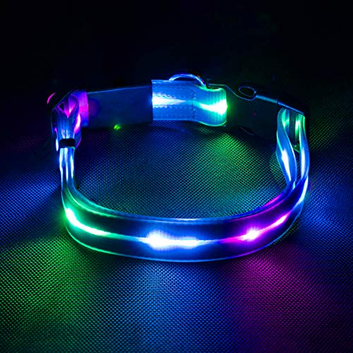 LED Dog Collar, USB Rechargeable Waterproof Light Up Dog Collars, Safety Reflective Glowing Lighted Collar for Medium Large Dogs Pets, Blue