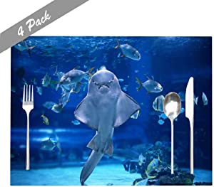 Capsceoll Placemats Heat-Resistant Washable Dining Table Placemat 18X12 Inches Set of 4 Placemats, Angel Shark in Aquarium You Can See as Stand X27;S Stomach for Holiday Kids and Kitchen Table Mats
