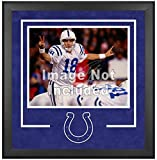 Indianapolis Colts Deluxe 16x20 Horizontal Photograph Frame