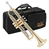 Best Brass Trumpets - Jean Paul USA TR-330 Standard Student Trumpet Review