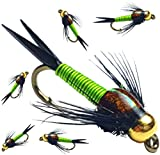 BH Copper John Fly Fishing Nymph Trout Fly Assortment - 6 Flies (Chartreuse)