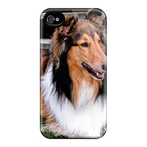 Durable Cases For The Iphone 4/4s- Eco-friendly Retail Packaging(rough Collie)