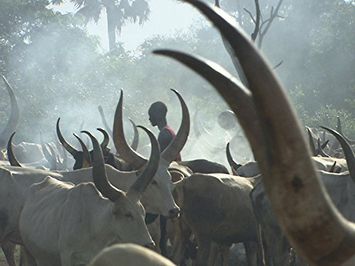 Life Tribal (The Dinka: War and Love on the Nile)