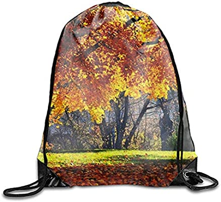 uykjuykj Bolsos De Gimnasio,Mochilas,Drawstring Bag Fall Leaves ...