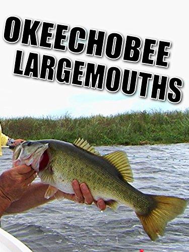 Largemouth Bass Fishing - Clip: Okeechobee Largemouths