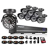 TMEZON 16CH Channel Video DVR CCTV Security Cameras System 8x 800tvl IR Cut Outdoor Bullet Hi-Resolution Surveillance Cameras Black Smart Phone View with 1TB HDD