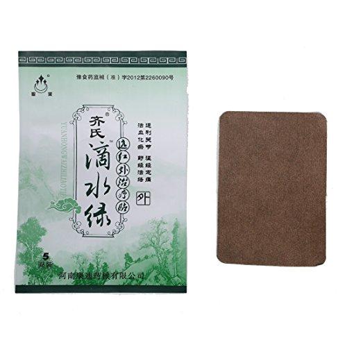 DSL chino calor yeso antiguo Ttreatment de artritis, especialmente nieve/lluvia, parche 10/2 Pack