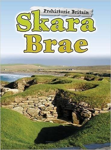 Image result for skara brae book